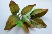 Листья розы оливковые, 3х3 шт.