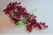Ампельное растение Мелкоцвет бургунди, шт