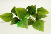 Листья розы Гранд, 3 шт