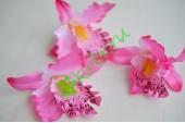 Бутон Орхидеи Тропикана розовый, шт.