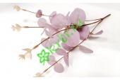 Ветка эвкалипта малая розовая, шт