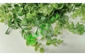 Веточки самшита зеленые с напылением, 10 шт