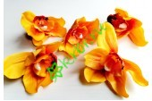 Бутон орхидеи Цимбидиум оранжевый, шт