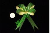 Бант бабочка с рисунком зеленый