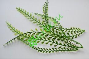 Зелень декоративная Алярия, 2 шт.