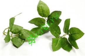 Листья розы 3х5 см, 3 пары