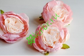 Бутон пиона Армали розовый, шт