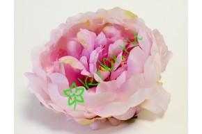 Бутон пиона Миледи крупный розовый, шт