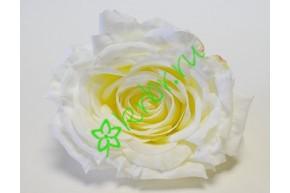 Бутон розы Нефертити белый, шт