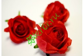 Бутон розы Рандеву красный, шт