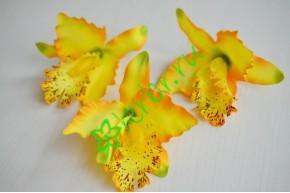 Бутон Орхидеи Тропикана желтый, шт.