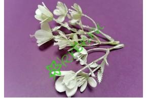 Мелкоцвет Весенний белый, шт