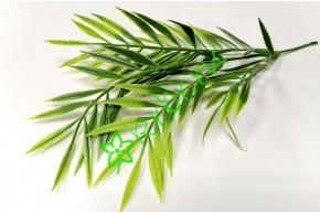 Ветка листьев бамбука, шт