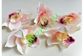 Бутон орхидеи Цимбидиум бело-розовый, шт