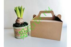 Подарочная коробка с ручкой Крафт 18х11х10 см, шт
