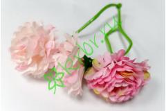 Веточка маргаритки розовые, шт