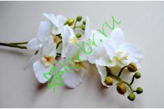 Ветка орхидеи Фаленопсис белая, шт