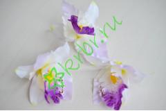 Бутон Орхидеи Тропикана бело-сиреневый, шт.