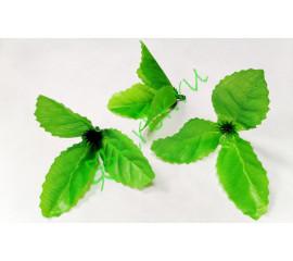 Чашелистик герберы светло-зеленый, шт.