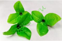 Чашелистик клематиса светло-зеленый, шт.