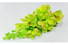 Дельфиниум соцветие зеленое, шт
