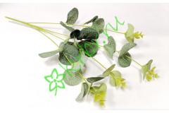 Ветка эвкалипта малая зеленая, шт