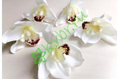 Бутон орхидеи Цимбидиум белый, шт