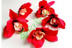 Бутон орхидеи Цимбидиум красный, шт
