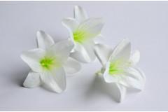 Бутон лилии Анна белый, шт