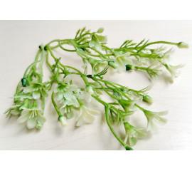 Веточка двойная мелкоцвет бело-зеленый, шт
