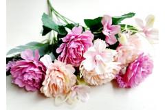 Роза-пион Валерия в букете джеральдин, шт