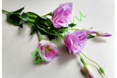 Эустома Дип Блу розово-сиреневая, шт
