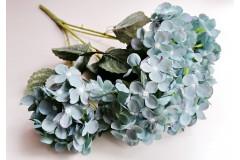 Гортензия Endless Summer пудровый голубой, шт