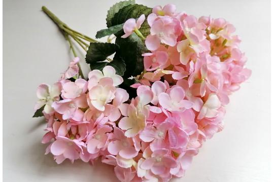 Гортензия Endless Summer нежно-розовая, шт