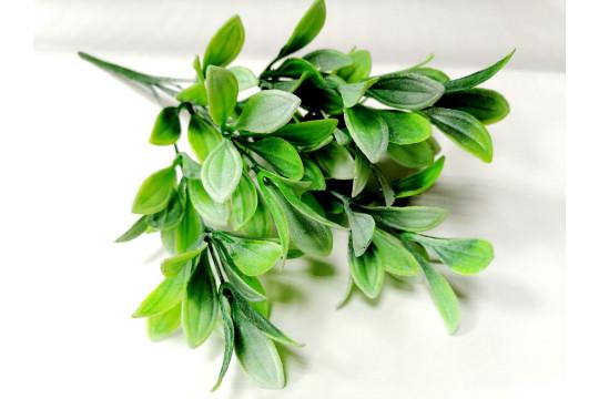 Ветка зелени Офелия, шт