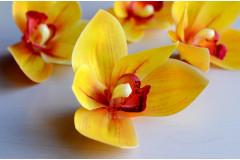 Бутон орхидеи Royal желтый, шт